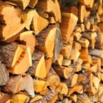 Types of Wood for smoking - Which one to choose?